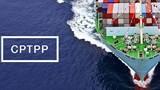 Ngành kinh tế nào được hưởng lợi nhất khi Việt Nam gia nhập CPTPP?