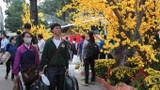 Vé xe tết giảm 20% dành cho sinh viên miền Trung