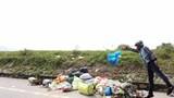 Đê Tả Lam biến thành nơi tập kết rác