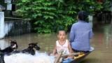 Nước thượng nguồn dồn về, người dân hạ du sông Lam chật vật trong lũ