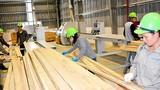 Nghệ An: Đưa công nghiệp chế biến gỗ thành ngành kinh tế mũi nhọn