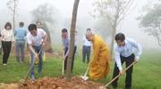 Chương trình 'Chùa Xanh' trồng hơn 1.100 cây xanh trên núi Đại Huệ