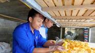 Hàng trăm sinh viên Nghệ An được chia sẻ kinh nghiệm khởi nghiệp
