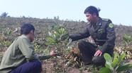 Nghệ An: Trên 10 nghìn ha đất lâm nghiệp bị mua bán, chuyển nhượng trái phép