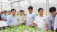 Triển khai thực hiện Đề án xây dựng Nam Đàn thành huyện nông thôn mới kiểu mẫu