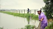 Nghệ An: Xã kê khống diện tích thiệt hại do mưa lũ để nhận tiền hỗ trợ