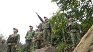 Bộ đội Biên phòng Nghệ An giăng dây, treo chuông... phòng tránh voi rừng