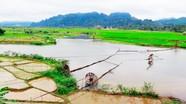 Cánh đồng lúa và bản làng Mường Chiềng Ngam, xã Châu Tiến, huyện Quỳ Châu