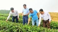 Anh Sơn phát triển mô hình trang trại ứng dụng công nghệ cao