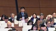 Đại biểu Quốc hội tỉnh Nghệ An phản ánh những tồn tại, bất cập trong xây dựng nông thôn mới