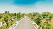 Xuân An Green Park: 95% sản phẩm liền kề đã được bán hết