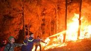 Thủ tướng yêu cầu cấp bách phòng cháy rừng ở miền Trung