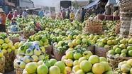 Lo xuất nông sản sang Trung Quốc gặp khó vì virus corona