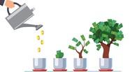 Bất chấp dịch bệnh, vốn đầu tư ra nước ngoài của doanh nghiệp Việt vẫn tăng mạnh