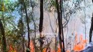 Nghệ An cảnh báo cháy rừng cấp 4, 5