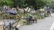 TP Vinh: Dự kiến sáp nhập các công ty môi trường, cây xanh và quản lý đô thị