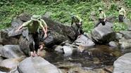 """Mỗi kiểm lâm viên """"gánh"""" hơn 10.000 ha rừng"""