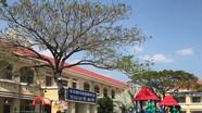 Vụ cô giáo quỳ xin lỗi: Khai trừ Đảng ông Võ Hòa Thuận