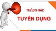 Thông báo về việc tiếp nhận, tuyển dụng viên chức giáo viên tiểu học ở Diễn Châu