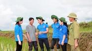 Tiếp nhận 24 trí thức trẻ tình nguyện tăng cường cho các xã vùng biên