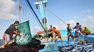 Nghệ An: một ngư dân rơi xuống biển tử vong
