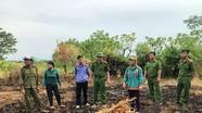 Khởi tố đối tượng gây cháy rừng ở Hà Tĩnh