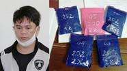Mua hơn 1.000 viên ma túy tổng hợp từ Nghệ An, giấu trong chậu cây cảnh dùng dần