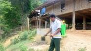 Dịch tả lợn châu Phi đã lan đến hơn 1/3 số xã của huyện biên giới Kỳ Sơn