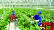 Đề xuất gần 9.000 tỷ đồng hỗ trợ nông nghiệp vượt khó khăn do dịch Covid-19