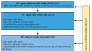 Sơ đồ phân loại (các F) cách ly người nhiễm Covid- 19 ai cũng cần phải biết