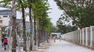 Thành phố Vinh sẽ đầu tư 675 tỷ đồng chỉnh trang 5 tuyến phố quan trọng