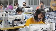 Nghệ An: Thu ngân sách 7 tháng đạt hơn 8.000 tỷ đồng
