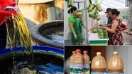Nghệ An hỗ trợ đến 500 triệu đồng/cơ sở sản xuất hàng OCOP