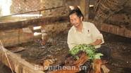 Nam Hưng (Nam Đàn): Phát triển nghề chăn nuôi dê