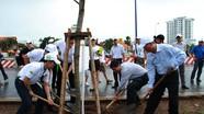 Vinamilk trồng 200 cây giáng hương vì màu xanh Việt