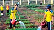 Học sinh ở khu vực có điều kiện KT-XH đặc biệt khó khăn sẽ được hỗ trợ gạo