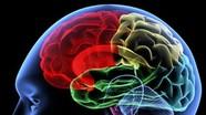 Nga dùng công nghệ nano để trị thoái hóa thần kinh