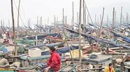 Quỳnh Lưu chủ động phòng chống cơn bão số 6