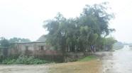 Xử lý nghiêm việc cấp đất sai quy định tại xã Tràng Sơn (Đô Lương)