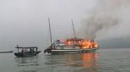 Đình chỉ toàn bộ tàu của công ty có tàu cháy trên vịnh Hạ Long