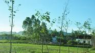 Xử phạt vi phạm hành chính trong lĩnh vực đất đai ở Nghi Đồng-Nghi Lộc