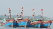 Ngư dân phấn khởi đón lộc biển đầu năm