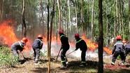 Yên Thành: Diễn tập phòng cháy chữa cháy rừng