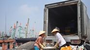 Nâng cao kiến thức bảo quản hải sản cho ngư dân đánh bắt xa bờ