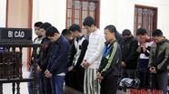 Trộm trâu bò, đối tượng ở Đô Lương bị phạt 13 năm tù