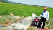 Hưng Nguyên: 3.000 ha lúa bị khô hạn