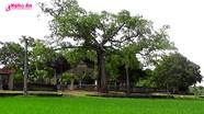 Khám phá ngôi đình cổ 300 năm ở Yên Thành