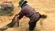 Người dân đi xúc cá sau trận mưa đá ở Kỳ sơn