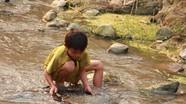 Nghệ An: học sinh Khơ Mú bỏ học đi đào vàng