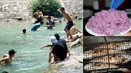 Về Con Cuông tắm Khe nước Mọc, ăn cá nướng và xôi tím